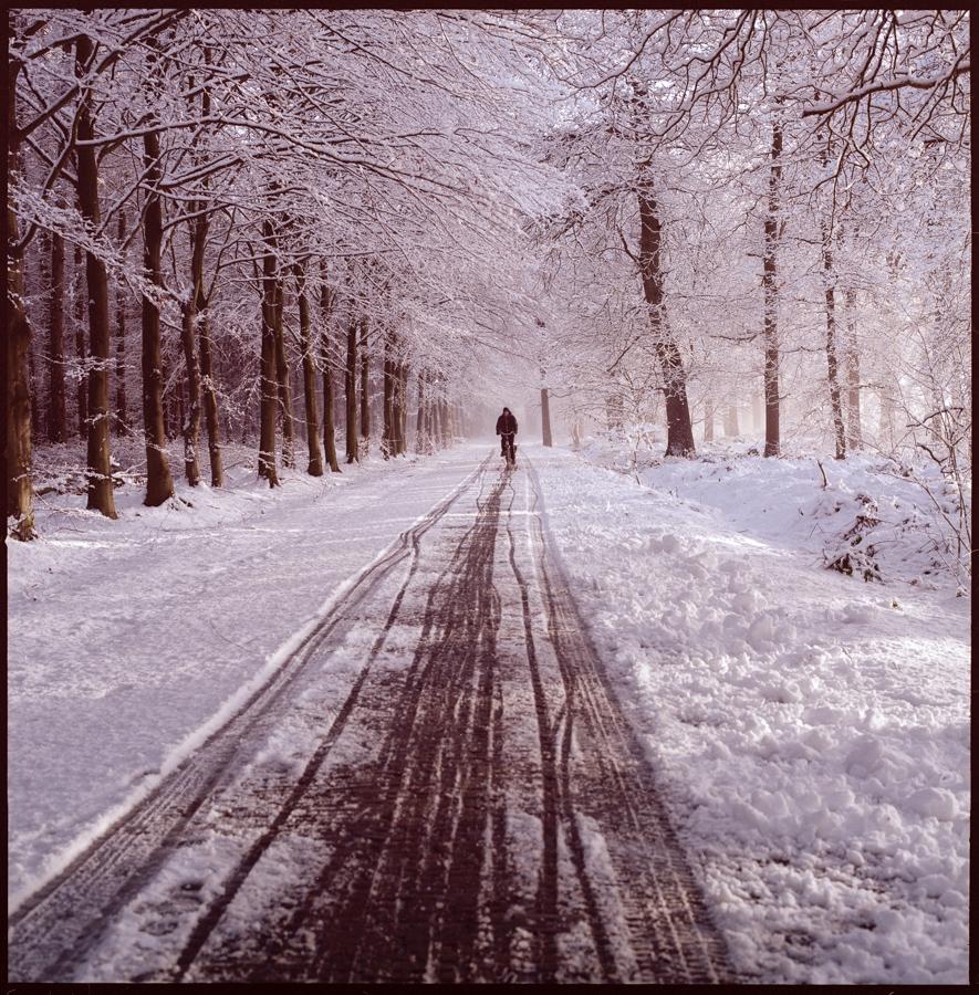 Johan Niels Kuiper Fotograaf in Assen - Asserbos in de sneeuw, Hasselblad